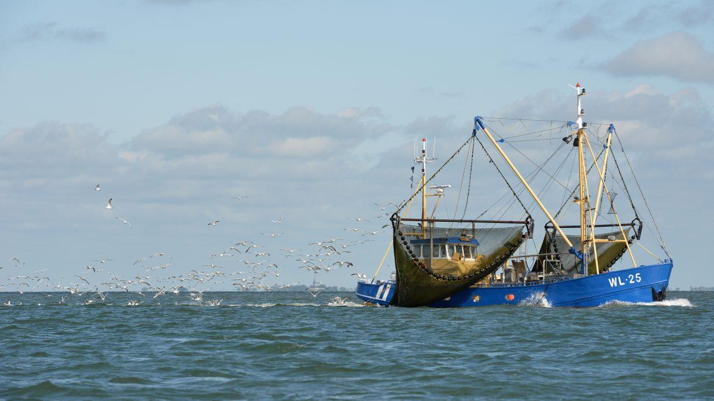 Bateau de pêche illustrant la pêche durable